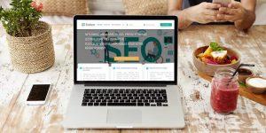 Ereferer – La meilleure plateforme de Netlinking ?